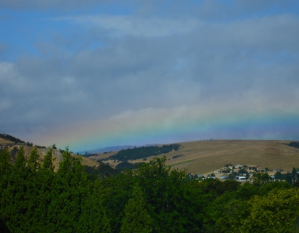 rainbow in Oregon